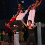 nicas-2007